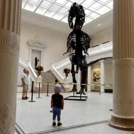 dinosaur at New Orleans Museum of Art
