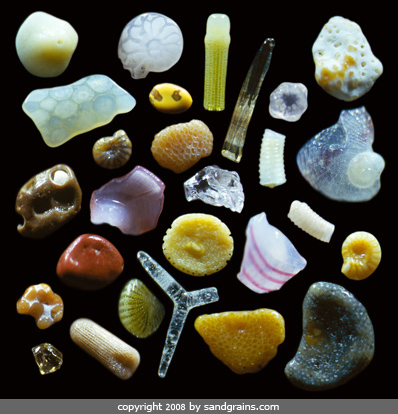 Sand photographed by Dr. Gary Greenburg