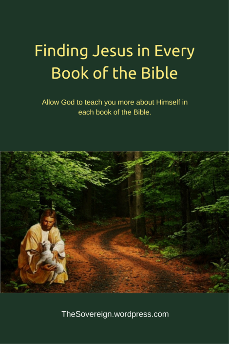 Allow God to teach you more about Himself in each book of the Bible.
